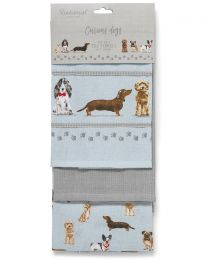 Cooksmart 3 Pack Curious Dogs Tea Towels